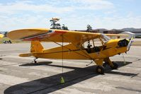 N48525 @ KLPC - Lompoc Piper Cub fly in 2010 - by Nick Taylor