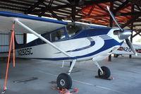 N2925C @ HRI - 1954 Cessna 180, c/n: 30825 - by Terry Fletcher