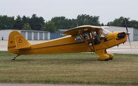 N2039M @ KOSH - Piper J3C-65 - by Mark Pasqualino