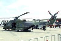 78 13 @ EDDB - NHI NH90 TTH of the Heeresflieger (German Army Aviation) at ILA 2010, Berlin