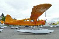 N67681 @ RNT - 1954 Dehavilland DHC-2-L-20, c/n: 671