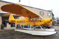 N390CC @ S60 - 2002 Piper/cub Crafters PA-18-150, c/n: 9944CC