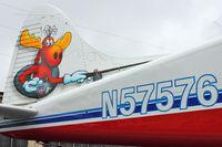 N57576 @ S60 - Artwork on 1956 Dehavilland DHC-2 MK. I(L20A), c/n: 1168