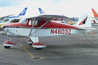 N4603Z @ PAE - 1961 Piper PA-22-108, c/n: 22-8117