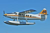 C-GOPP @ CYHC - 1959 De Havilland Canada DHC-3, c/n: 355 ex   USAF 59-2217