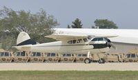 N195P @ KOSH - Airventure 2012
