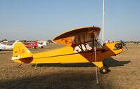 N88456 @ KOSH - Piper J3C-65 - by Mark Pasqualino