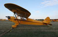 N1559N @ KOSH - Piper J3C-65 - by Mark Pasqualino