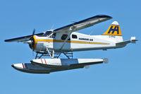 C-FFHQ @ CYHC - 1949 De Havilland Canada DHC-2 MK. I, c/n: 42
