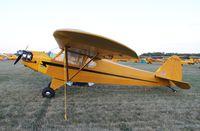C-FBYO @ KOSH - Piper J3C-65 - by Mark Pasqualino