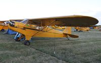 N88431 @ KOSH - Piper J3C-65 - by Mark Pasqualino