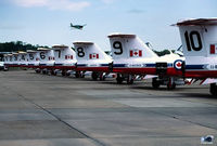 114089 @ MIV - Snowbird Tails - CL.41A Team aircraft lineup. 114089 is ex RCAF 26089 - by John Hevesi