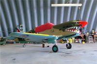 C-FGAM @ CEX3 - Loehle P-40 Kittyhawk 2/3 scale [RFG-02] Wetaskiwin~C 23/07/2008 - by Ray Barber