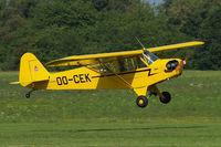 OO-CEK @ EBDT - Piper J-3C-65 Cub [12760] Schaffen-Diest~OO 14/08/2010