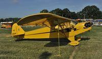 N1559N @ KOSH - Airventure 2012 - by Todd Royer