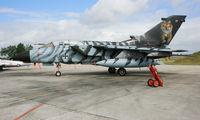 46 48 @ LFRJ - German Panavia Tornado ECR, with special livery Tiger Meet 2008, Landivisiau Naval Air Base (LFRJ) - by Yves-Q
