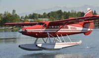 N2899J @ PALH - Landing at Lake Hood