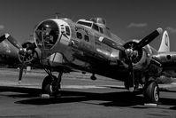 N3701G @ TMK - chuckie @ Tillamook Air Museum - by Terry Green