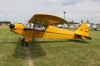 N2207M @ KOSH - Piper J3C-65 - by Mark Pasqualino