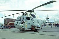 N16-125 @ EGVI - Westland WS.61 Mk.50A Sea King [WA796] (Royal Australian Navy) RAF Greenham Common~G 26/06/1977. Image taken from a slide.