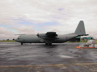 XV301 photo, click to enlarge