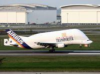 F-GSTD @ LFBO - Airbus A300-605ST Beluga, Landing Rwy 14R, Toulouse Blagnac Airport (LFBO-TLS) - by Yves-Q