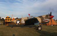 N4420K @ KOSH - Curtiss P-40E