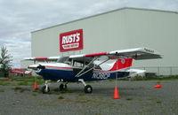 N138CP @ LHD - Tied down at Lake Hood, Anchorage. - by Murray Lundberg