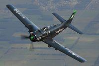 G-RADR @ INFLIGHT - Skyraider
