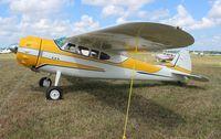 N195PC @ LAL - Cessna 195B