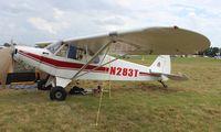 N283T @ LAL - Piper PA-18