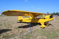N28001 @ LAL - Piper J3C Cub at Sun N Fun