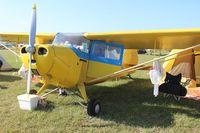 N86024 @ LAL - Aeronca 11AC