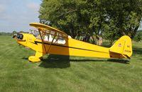 N1559N @ C77 - Piper J3C-65 - by Mark Pasqualino