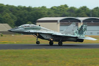 5304 @ EHGR - Slovak AF MiG-29 5304 in nice tiger livery - by Nicpix Aviation Press  Erik op den Dries