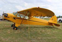 N88146 @ LAL - Piper J-3 Cub