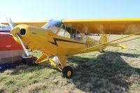 N156T @ LAL - Piper PA-18