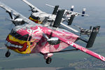 OE-FDN @ INFLIGHT - Pink Aviation Skyvan