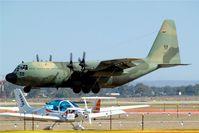 A97-010 @ YMAV - Lockheed C-130H Hercules [4790] (Royal Australian Air Force) Avalon~VH 22/03/2007