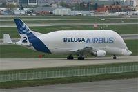 F-GSTB @ LFBO - Airbus A300B4-608ST Beluga, Taxiing after landing rwy 32L, Toulouse-Blagnac Airport (LFBO-TLS) - by Yves-Q