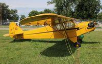 N3380N @ KOSH - Piper J3C-65 - by Mark Pasqualino
