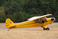 N6582H @ PLU - Piper Cub at Cubs and Classics - by Eric Olsen