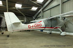 G-FOXO photo, click to enlarge