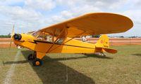 N3560N @ LAL - Piper J3 Cub
