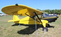 N5949H @ LAL - Piper PA-16 Clipper