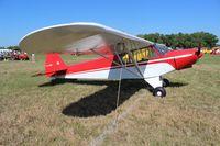 N7148K @ LAL - Piper PA-18