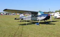 N8087A @ LAL - Cessna 170B