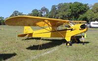 N70982 @ KLAL - Piper Cub - by Florida Metal