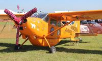 N90SN @ LAL - Cessna 185F