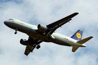 D-AIPY @ EGLL - Airbus A320-211 [0161] (Lufthansa) Home~G 17/08/2009. On approach 27R.
